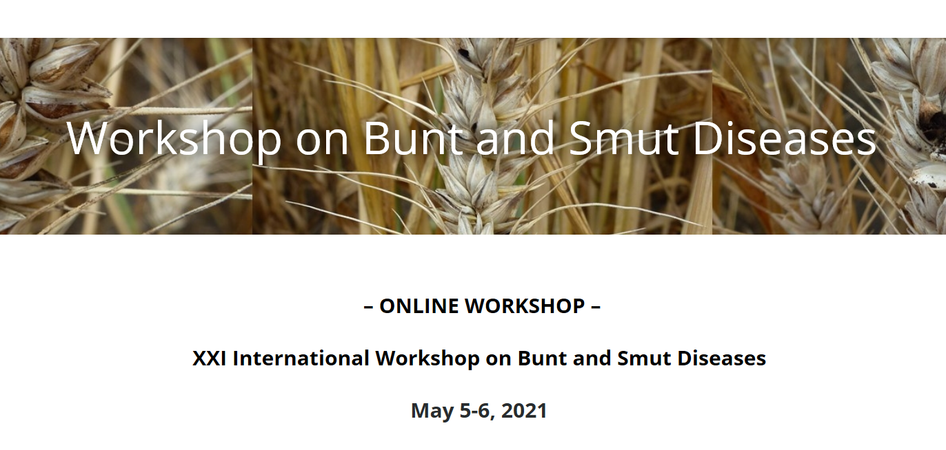 The XXI International Workshop on Bunt and Smut Diseases